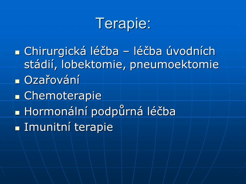 Pooperační péče: epidurální tlumení bolesti epidurální tlumení bolesti Řízené dýchání Řízené dýchání Po extubaci polosed Po extubaci polosed 1.