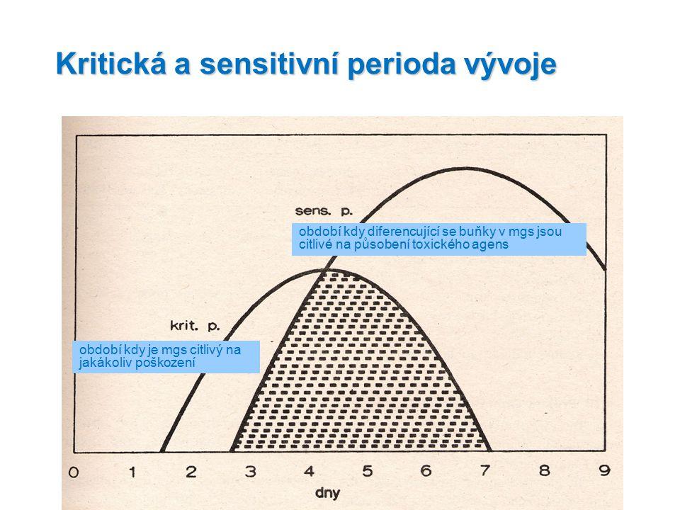 Kritická a sensitivní perioda vývoje období kdy je mgs citlivý na jakákoliv poškození období kdy diferencující se buňky v mgs jsou citlivé na působení