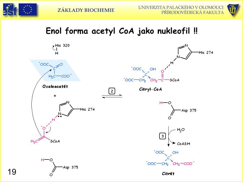 Enol forma acetyl CoA jako nukleofil !! 19