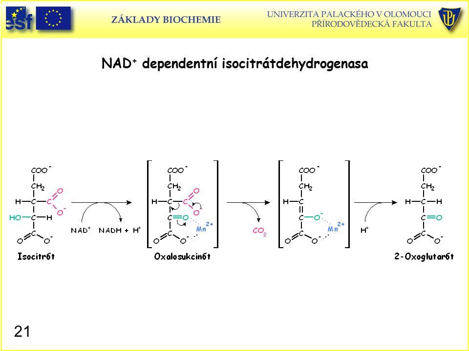 NAD + dependentní isocitrátdehydrogenasa 21