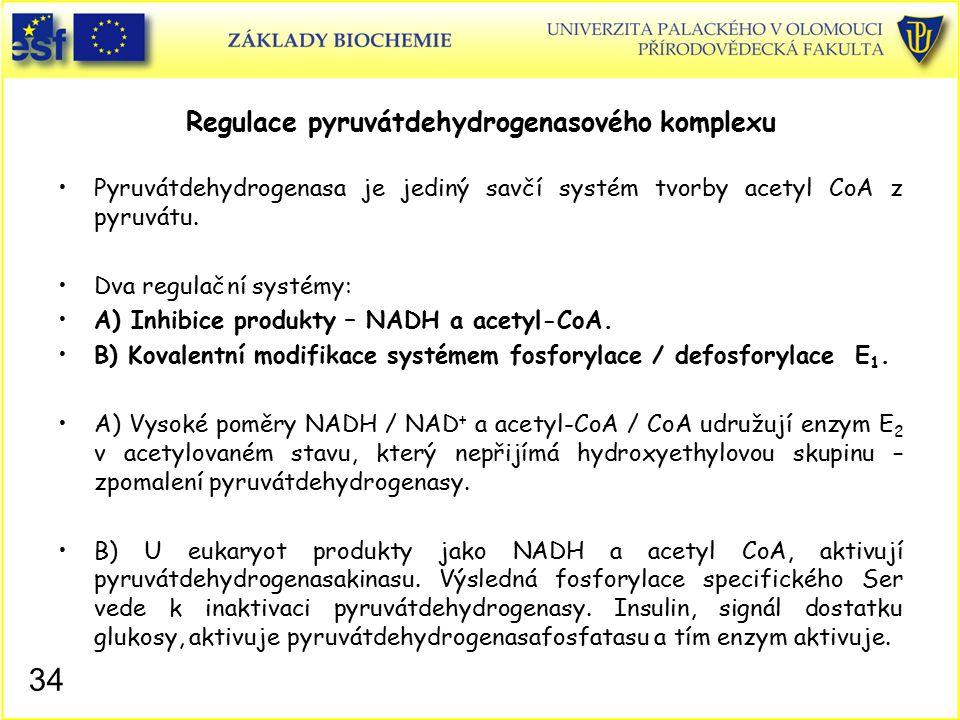 Regulace pyruvátdehydrogenasového komplexu Pyruvátdehydrogenasa je jediný savčí systém tvorby acetyl CoA z pyruvátu. Dva regulační systémy: A) Inhibic
