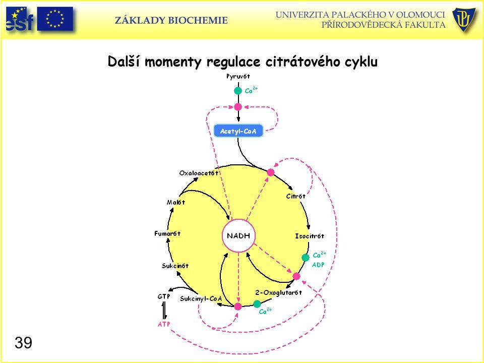 Další momenty regulace citrátového cyklu 39