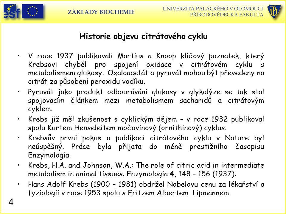 Historie objevu citrátového cyklu V roce 1937 publikovali Martius a Knoop klíčový poznatek, který Krebsovi chyběl pro spojení oxidace v citrátovém cyk