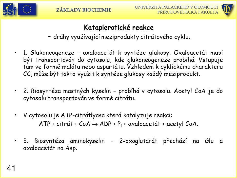 Kataplerotické reakce - dráhy využívající meziprodukty citrátového cyklu. 1. Glukoneogeneze – oxaloacetát k syntéze glukosy. Oxaloacetát musí být tran