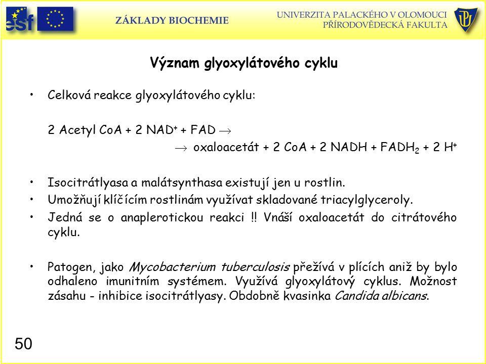 Význam glyoxylátového cyklu Celková reakce glyoxylátového cyklu: 2 Acetyl CoA + 2 NAD + + FAD   oxaloacetát + 2 CoA + 2 NADH + FADH 2 + 2 H + Isocit