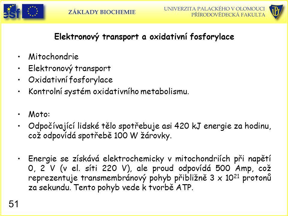 Elektronový transport a oxidativní fosforylace Mitochondrie Elektronový transport Oxidativní fosforylace Kontrolní systém oxidativního metabolismu. Mo