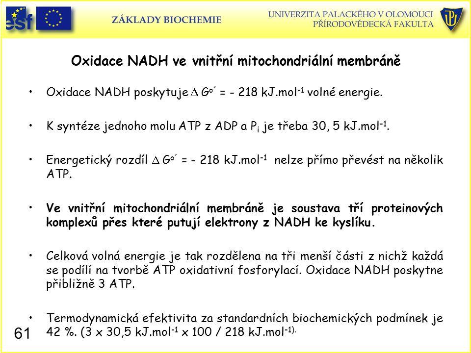 Oxidace NADH ve vnitřní mitochondriální membráně Oxidace NADH poskytuje  G o´ = - 218 kJ.mol -1 volné energie. K syntéze jednoho molu ATP z ADP a P