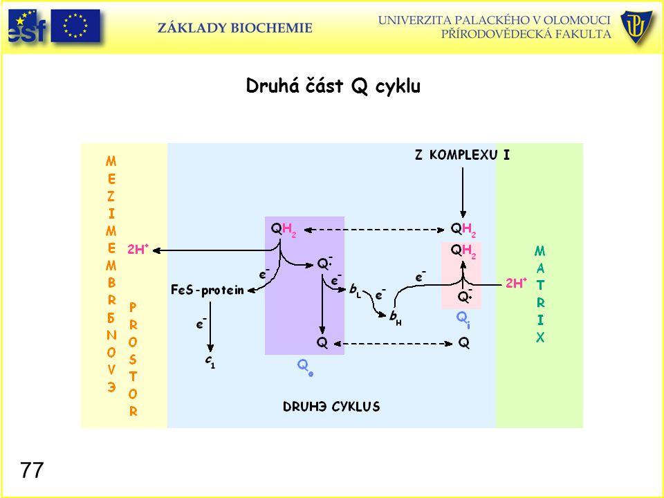 Druhá část Q cyklu 77