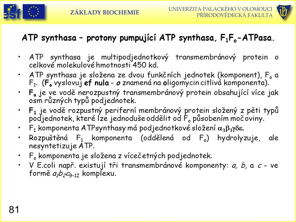 ATP synthasa – protony pumpující ATP synthasa, F 1 F o -ATPasa. ATP synthasa je multipodjednotkový transmembránový protein o celkové molekulové hmotno