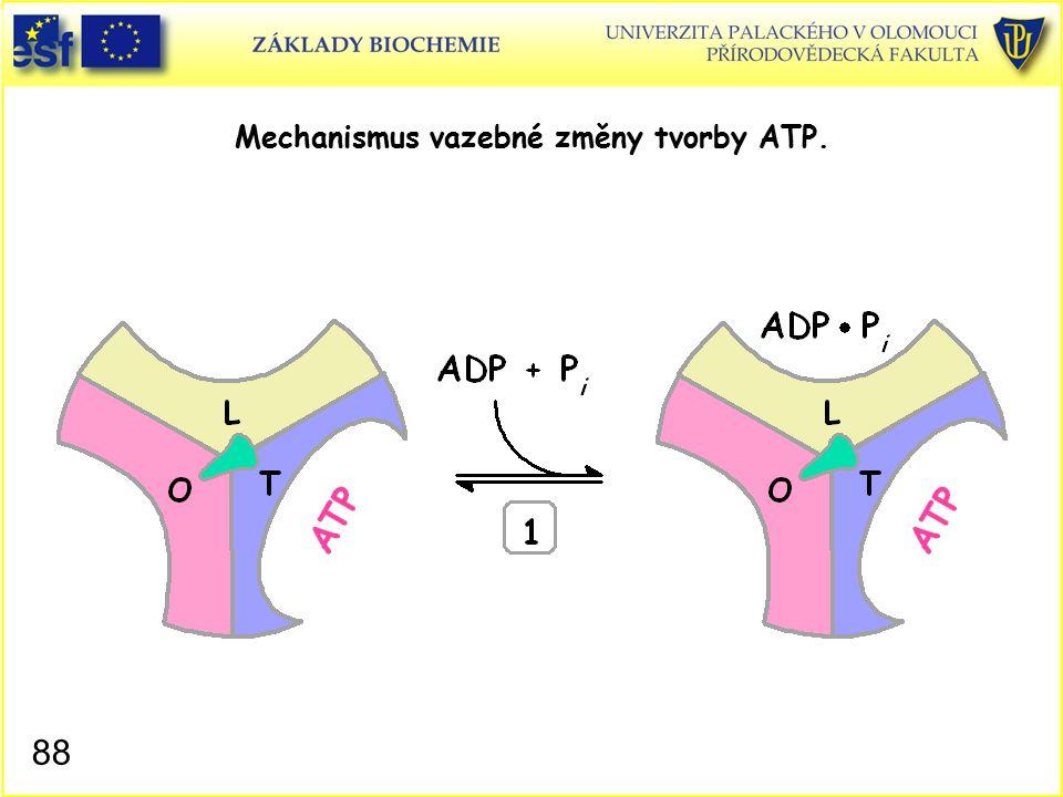 Mechanismus vazebné změny tvorby ATP. 88