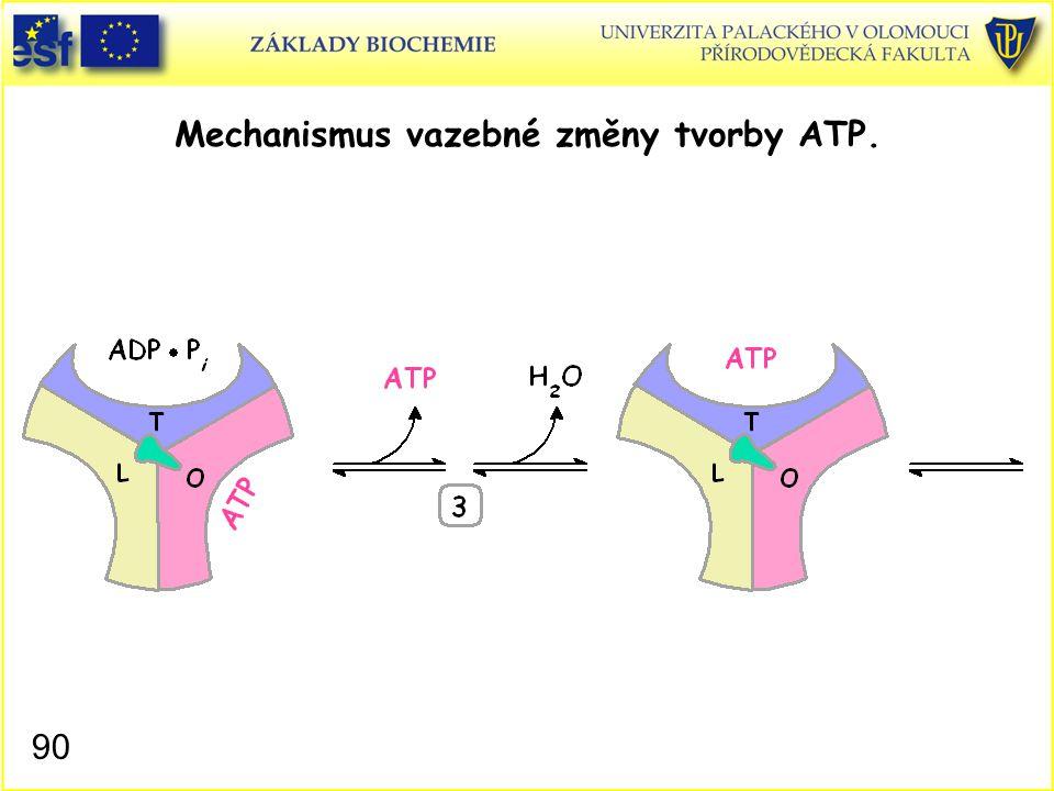 Mechanismus vazebné změny tvorby ATP. 90