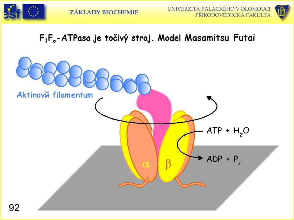 F 1 F o -ATPasa je točivý stroj. Model Masamitsu Futai 92