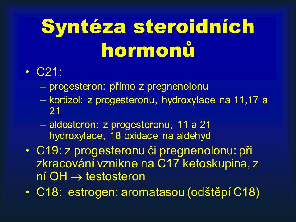 Syntéza steroidních hormonů C21: –progesteron: přímo z pregnenolonu –kortizol: z progesteronu, hydroxylace na 11,17 a 21 –aldosteron: z progesteronu, 11 a 21 hydroxylace, 18 oxidace na aldehyd C19: z progesteronu či pregnenolonu: při zkracování vznikne na C17 ketoskupina, z ní OH  testosteron C18: estrogen: aromatasou (odštěpí C18)