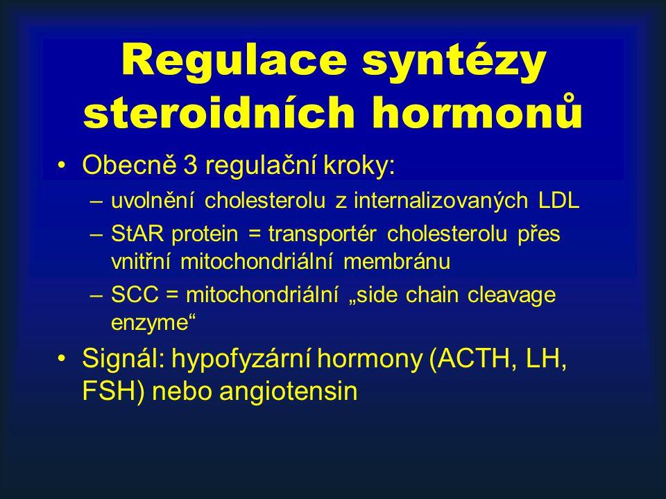 """Regulace syntézy steroidních hormonů Obecně 3 regulační kroky: –uvolnění cholesterolu z internalizovaných LDL –StAR protein = transportér cholesterolu přes vnitřní mitochondriální membránu –SCC = mitochondriální """"side chain cleavage enzyme Signál: hypofyzární hormony (ACTH, LH, FSH) nebo angiotensin"""