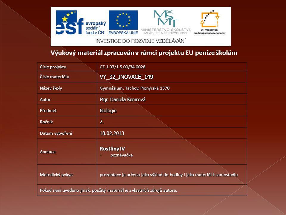Číslo projektu CZ.1.07/1.5.00/34.0028 Číslo materiálu VY_32_INOVACE_149 Název školy Gymnázium, Tachov, Pionýrská 1370 Autor Mgr.