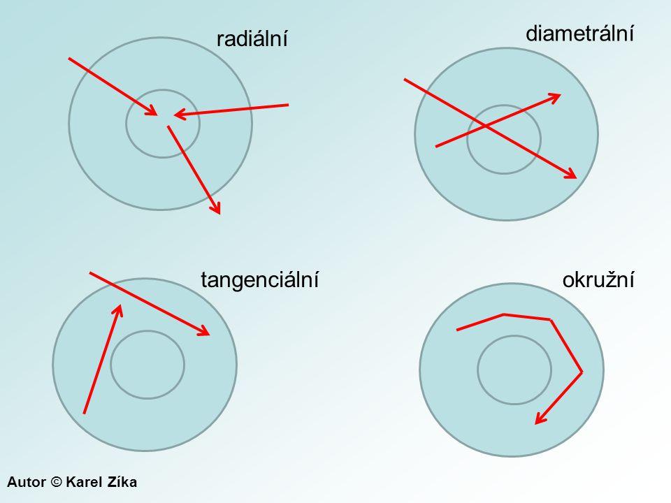 radiální diametrální tangenciálníokružní Autor © Karel Zíka