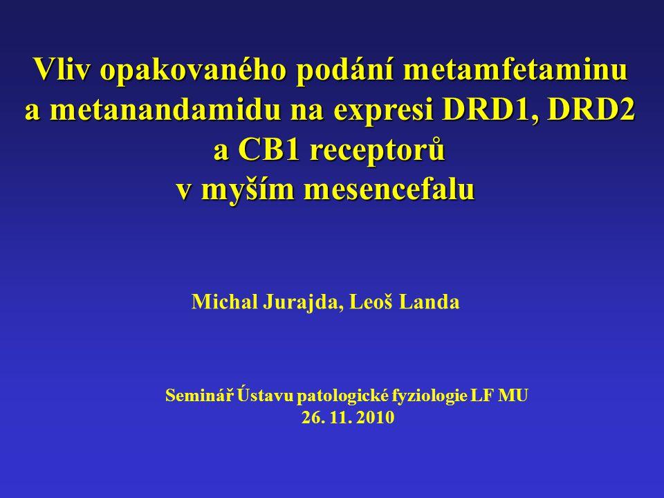 Vliv opakovaného podání metamfetaminu a metanandamidu na expresi DRD1, DRD2 a CB1 receptorů v myším mesencefalu Michal Jurajda, Leoš Landa Seminář Ústavu patologické fyziologie LF MU 26.
