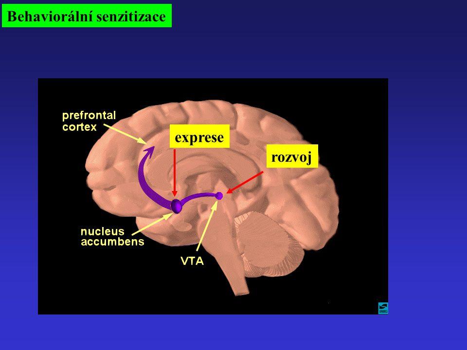 Behaviorální senzitizace rozvoj exprese