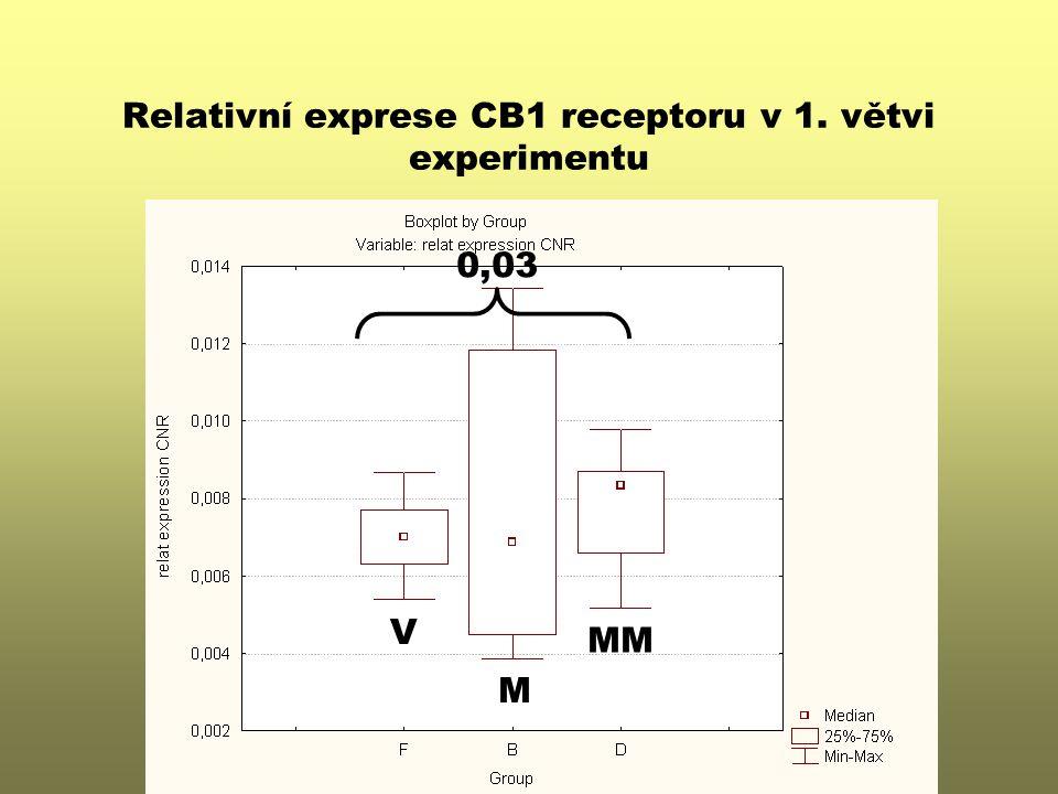 Relativní exprese CB1 receptoru v 1. větvi experimentu V M MM 0,03