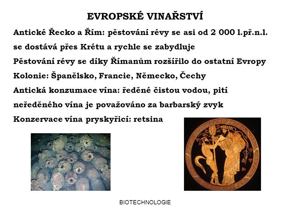 BIOTECHNOLOGIE EVROPSKÉ VINAŘSTVÍ Antické Řecko a Řím: pěstování révy se asi od 2 000 l.př.n.l. se dostává přes Krétu a rychle se zabydluje Pěstování