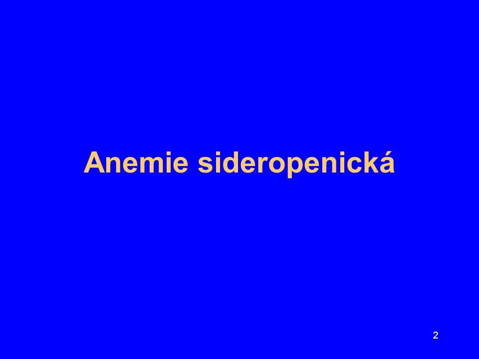 2 Anemie sideropenická
