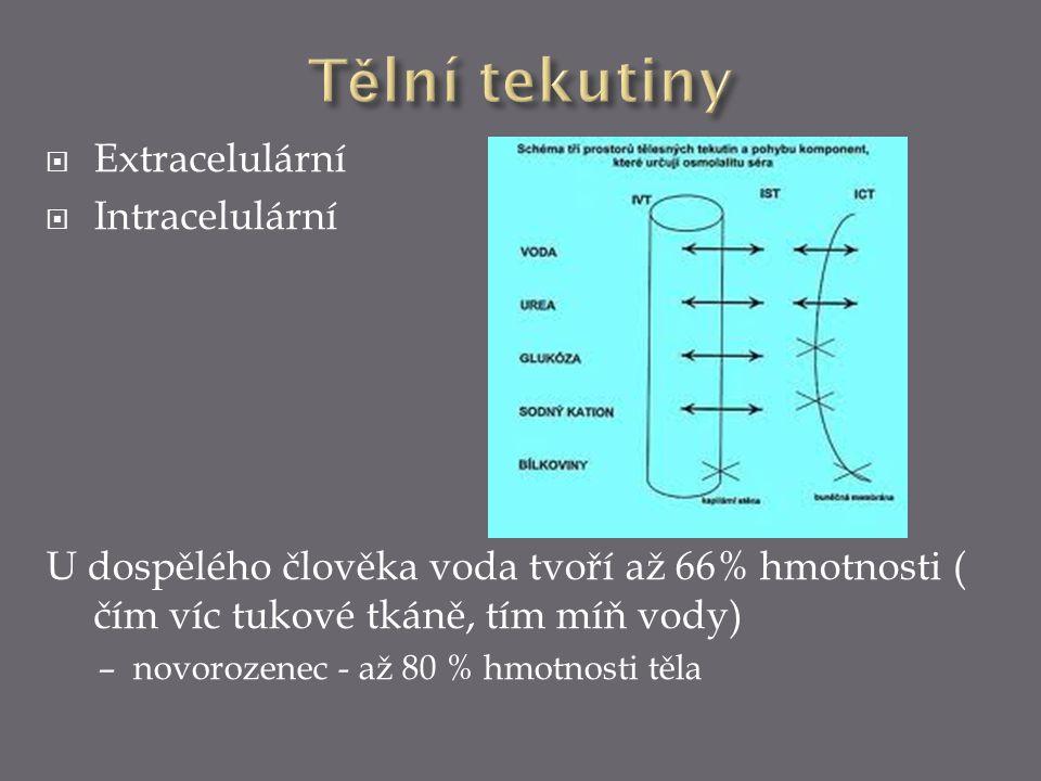  Extracelulární  Intracelulární U dospělého člověka voda tvoří až 66% hmotnosti ( čím víc tukové tkáně, tím míň vody) – novorozenec - až 80 % hmotno