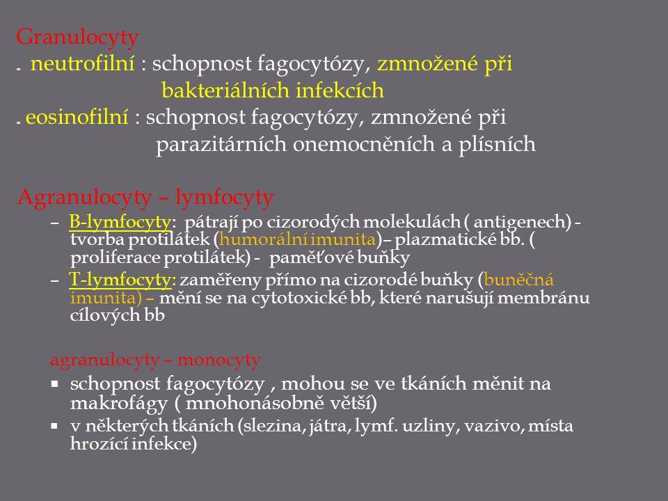 Granulocyty  neutrofilní : schopnost fagocytózy, zmnožené při bakteriálních infekcích  eosinofilní : schopnost fagocytózy, zmnožené při parazitárníc