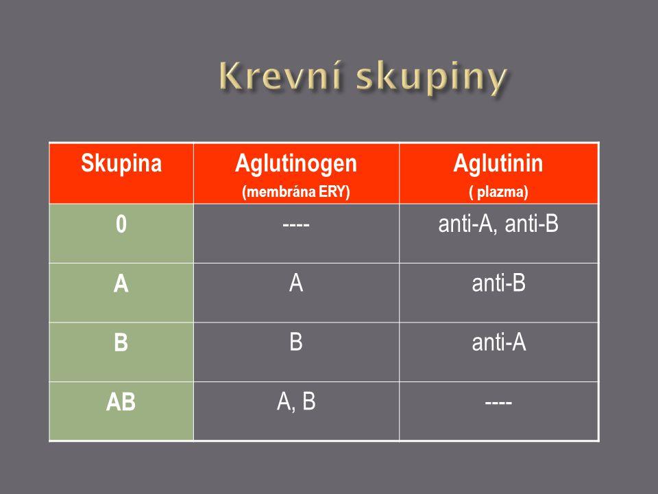 SkupinaAglutinogen (membrána ERY) Aglutinin ( plazma) 0 ----anti-A, anti-B A Aanti-B B Banti-A AB A, B----