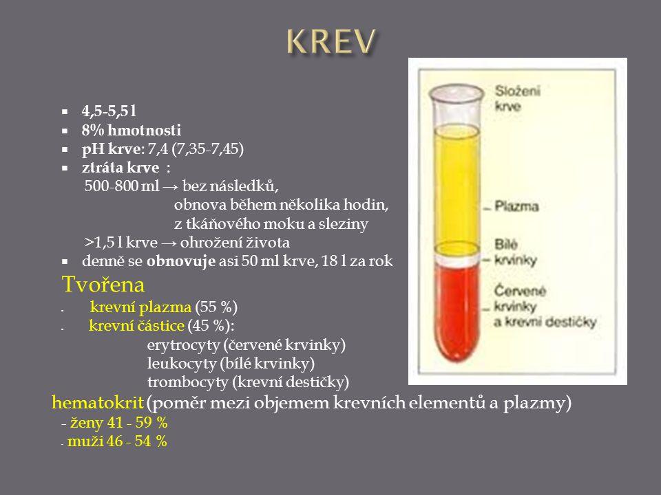  4,5-5,5 l  8% hmotnosti  pH krve : 7,4 (7,35-7,45)  ztráta krve : 500-800 ml → bez následků, obnova během několika hodin, z tkáňového moku a slez
