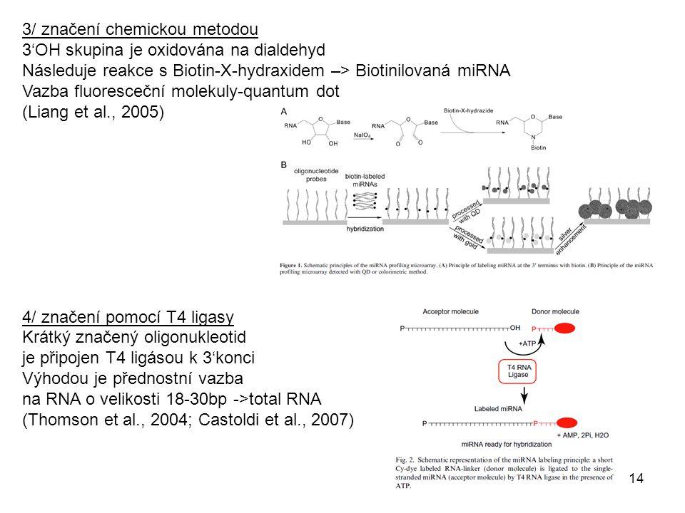 Nepřímé značení: Značen je produkt reverzní transkripce či PCR Výhody: cDNA je pak stabilní a lze uchovat, Pre-amplifikace a tím snadnější detekce méně exprimovaných miRNA 1/ značení revezního transkriptu miRNA Reverzní transkripce pomocí náhodných 8-merů značených 2 biotiny (3'-(N)8 – (A)12-biotin-(A)12-biotin-5' (Liu et al., 2004) Reverzní transkripce pomocí náhodných neznačených 7-merů, následně označeny s pomocí terminální transferázy a biotin-dideoxy-UTP (Sun et al., 2004) Nebezpečí chyb z nespecifické vazby primeru 2/ značení produktu RT-PCR Výhoda: snadná pre-amplifikace Dva adaptory fluorescenčně-značený primer (k adaptoru) (Miska et al., 2004) Nevýhoda: antisense strand přiromen při hybridizaci Rešením je různá délka sense a antisense ->PAGE (Baskerville, 2005) 3/ značení in vitro transkriptu Jeden z adaptorů je promotor T7 RNA polymerázy (Barad et al.