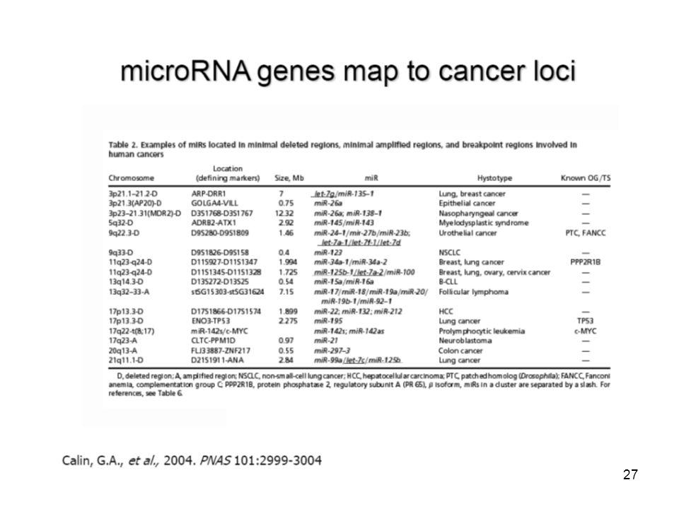 microRNA exprese je schopná rozlišit původ nádoru Lu et al. Nature 435: 834, 2005 28