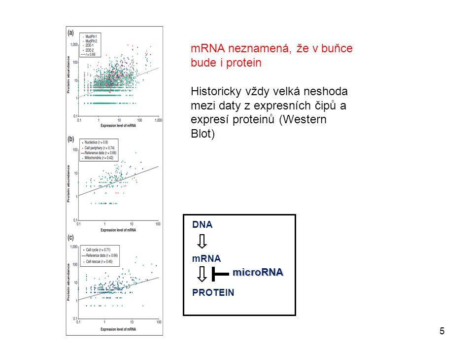 microRNA DNA mRNA PROTEIN mRNA neznamená, že v buňce bude i protein Historicky vždy velká neshoda mezi daty z expresních čipů a expresí proteinů (West