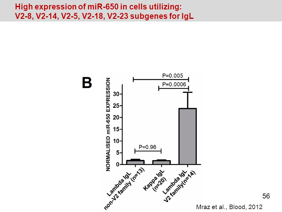 High expression of miR-650 in cells utilizing: V2-8, V2-14, V2-5, V2-18, V2-23 subgenes for IgL Mraz et al., Blood, 2012 56