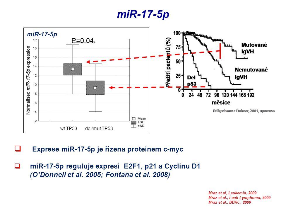  Exprese miR-17-5p je řízena proteinem c-myc  miR-17-5p reguluje expresi E2F1, p21 a Cyclinu D1 (O'Donnell et al. 2005; Fontana et al. 2008) miR-17-