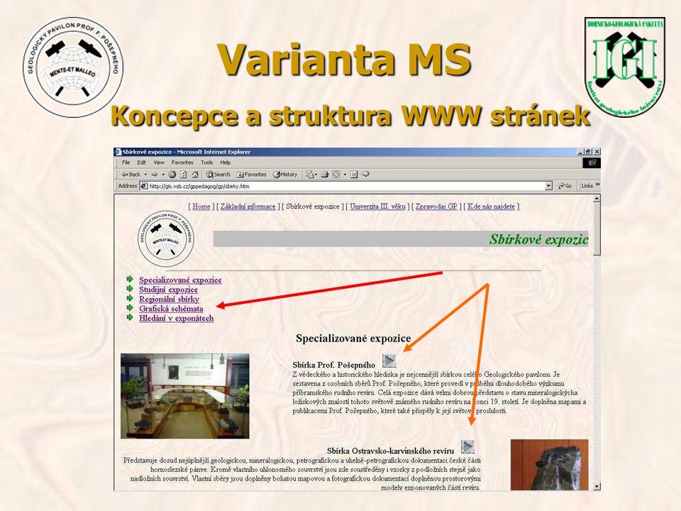 Varianta MS Koncepce a struktura WWW stránek