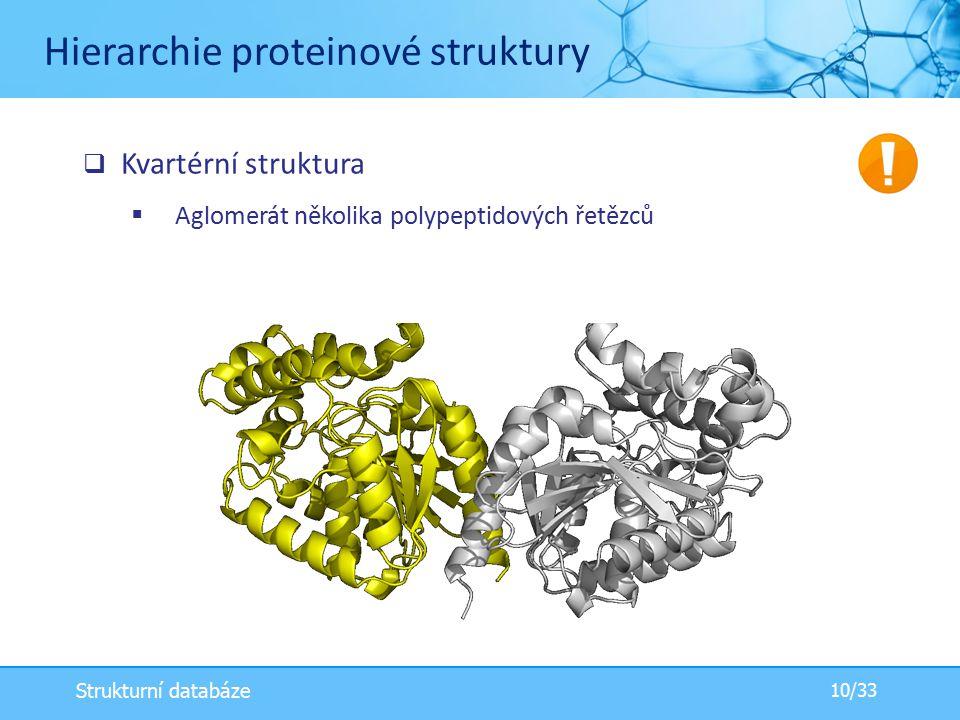  Kvartérní struktura  Aglomerát několika polypeptidových řetězců Hierarchie proteinové struktury 10/33 Strukturní databáze