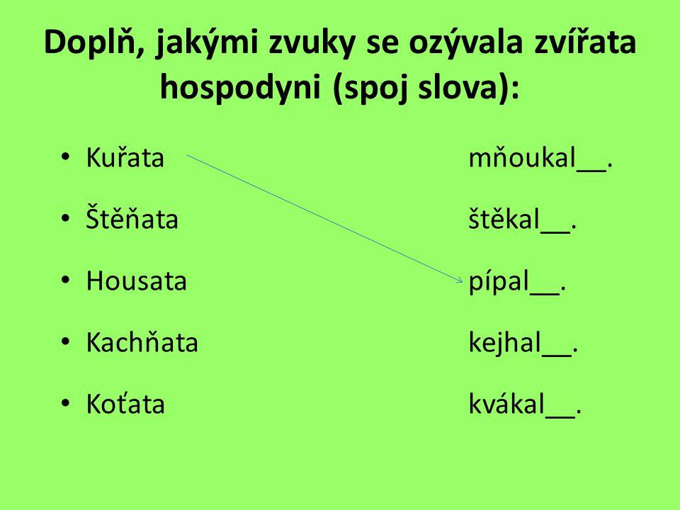 Doplň, jakými zvuky se ozývala zvířata hospodyni (spoj slova): Kuřatamňoukal__.