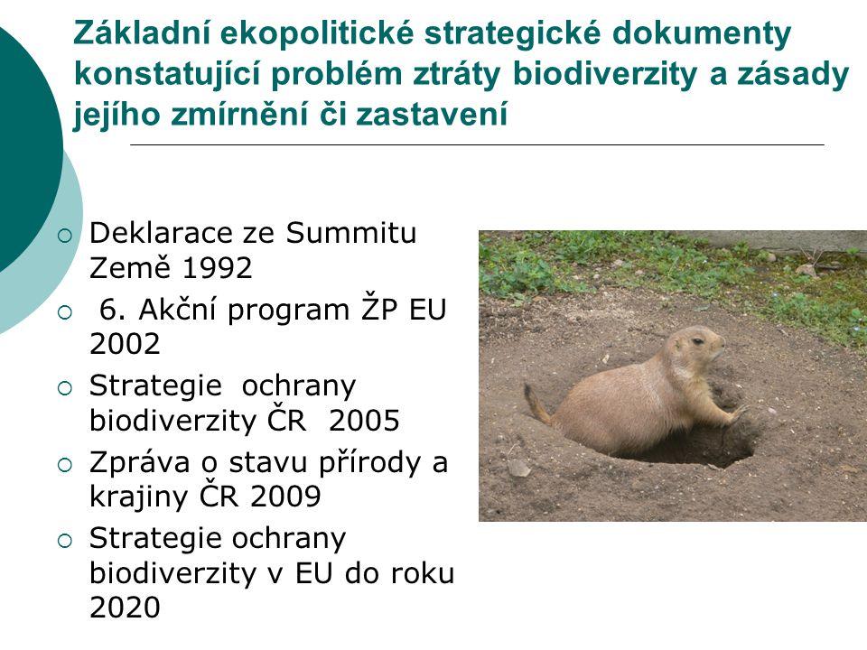 Základní ekopolitické strategické dokumenty konstatující problém ztráty biodiverzity a zásady jejího zmírnění či zastavení  Deklarace ze Summitu Země 1992  6.