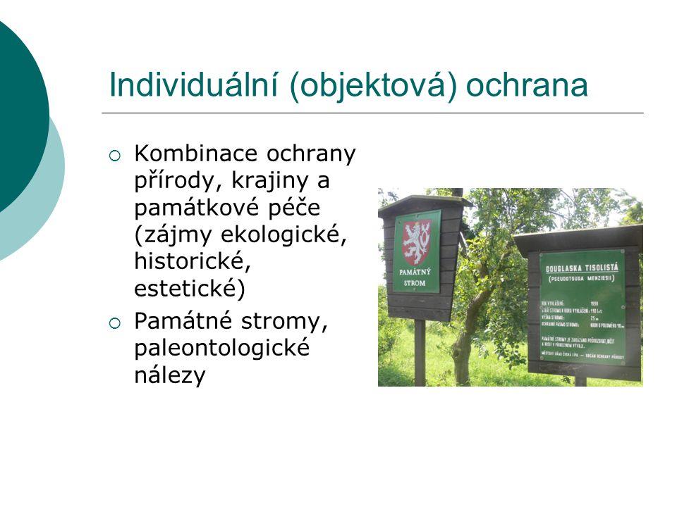 Individuální (objektová) ochrana  Kombinace ochrany přírody, krajiny a památkové péče (zájmy ekologické, historické, estetické)  Památné stromy, paleontologické nálezy
