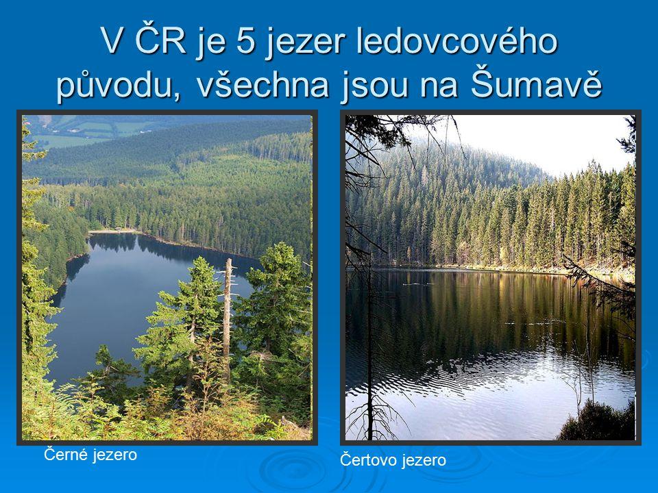 Prášilské jezero Jezero Laka Plešné jezero