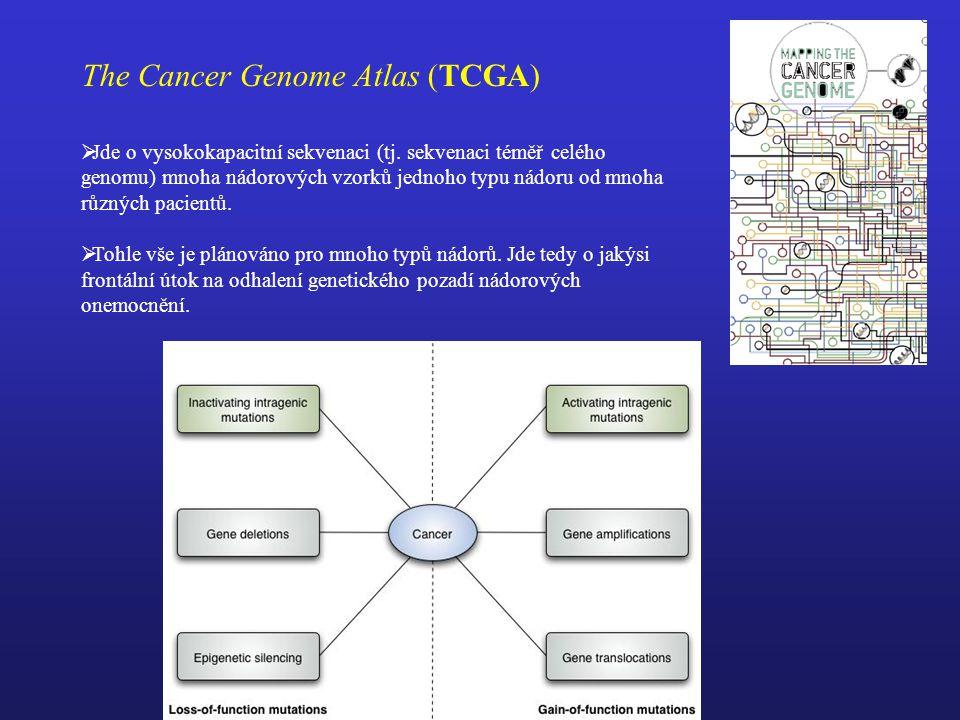 The Cancer Genome Atlas (TCGA)  Jde o vysokokapacitní sekvenaci (tj.