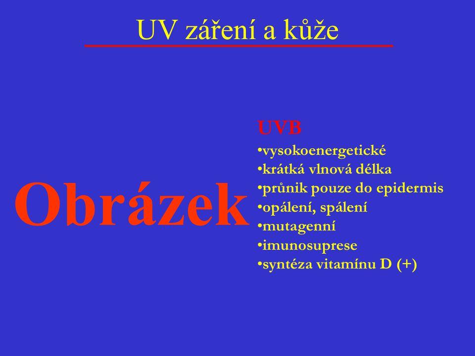 UV záření a kůže UVB vysokoenergetické krátká vlnová délka průnik pouze do epidermis opálení, spálení mutagenní imunosuprese syntéza vitamínu D (+) Ob