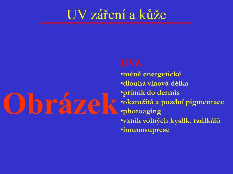UV záření a kůže UVA méně energetické dlouhá vlnová délka průnik do dermis okamžitá a pozdní pigmentace photoaging vznik volných kyslík. radikálů imun