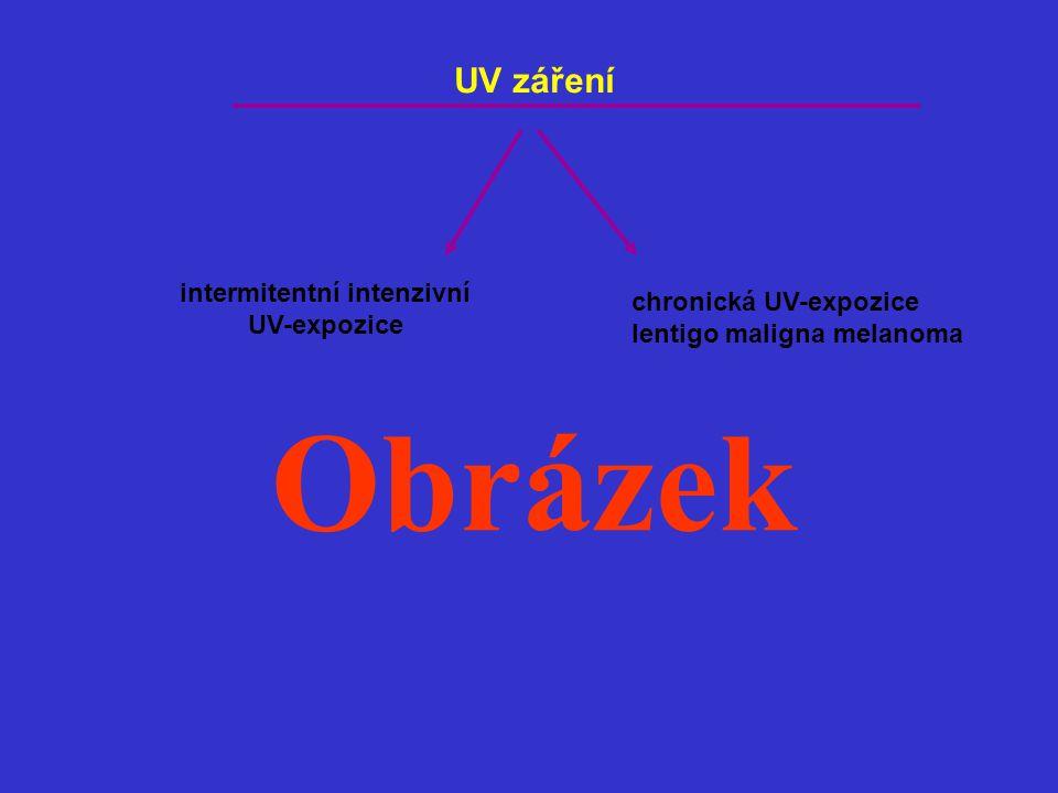 UV záření intermitentní intenzivní UV-expozice chronická UV-expozice lentigo maligna melanoma Obrázek