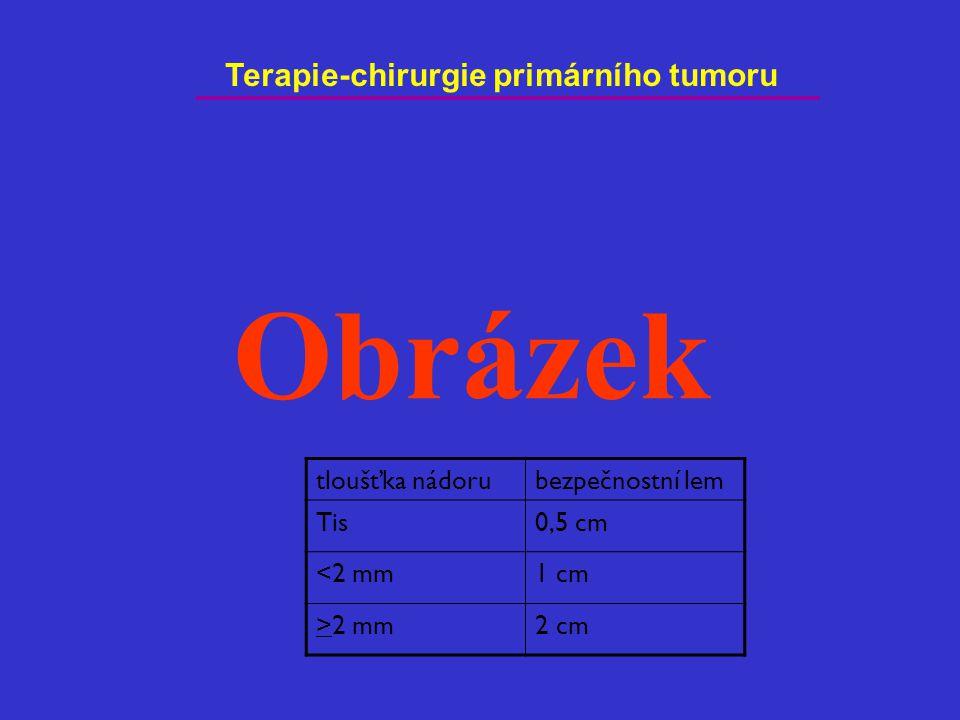 Terapie-chirurgie primárního tumoru tloušťka nádorubezpečnostní lem Tis0,5 cm <2 mm1 cm >2 mm2 cm Obrázek