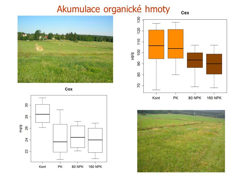 a Akumulace organické hmoty