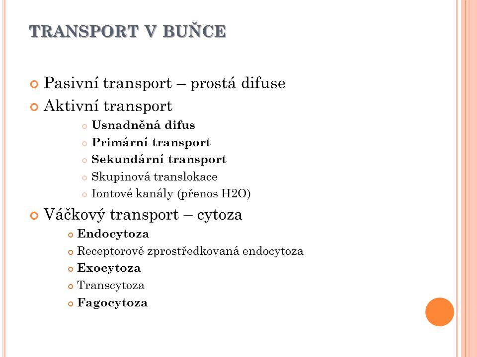 TRANSPORT V BUŇCE Pasivní transport – prostá difuse Aktivní transport Usnadněná difus Primární transport Sekundární transport Skupinová translokace Io