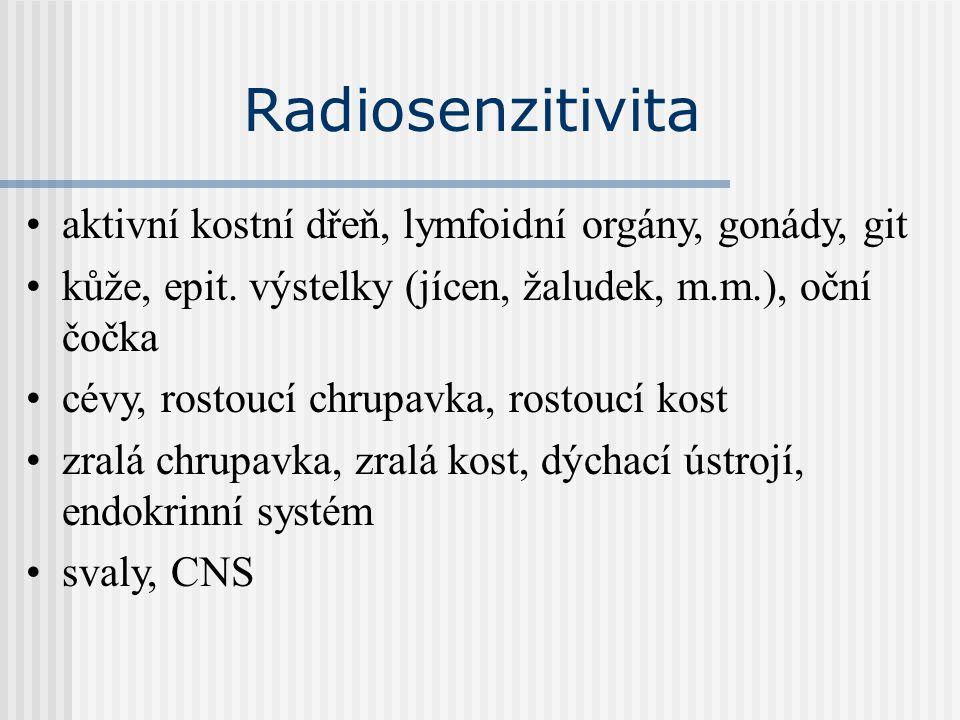 Radiosenzitivita aktivní kostní dřeň, lymfoidní orgány, gonády, git kůže, epit. výstelky (jícen, žaludek, m.m.), oční čočka cévy, rostoucí chrupavka,