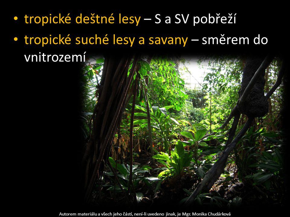 tropické deštné lesy – S a SV pobřeží tropické suché lesy a savany – směrem do vnitrozemí Autorem materiálu a všech jeho částí, není-li uvedeno jinak,