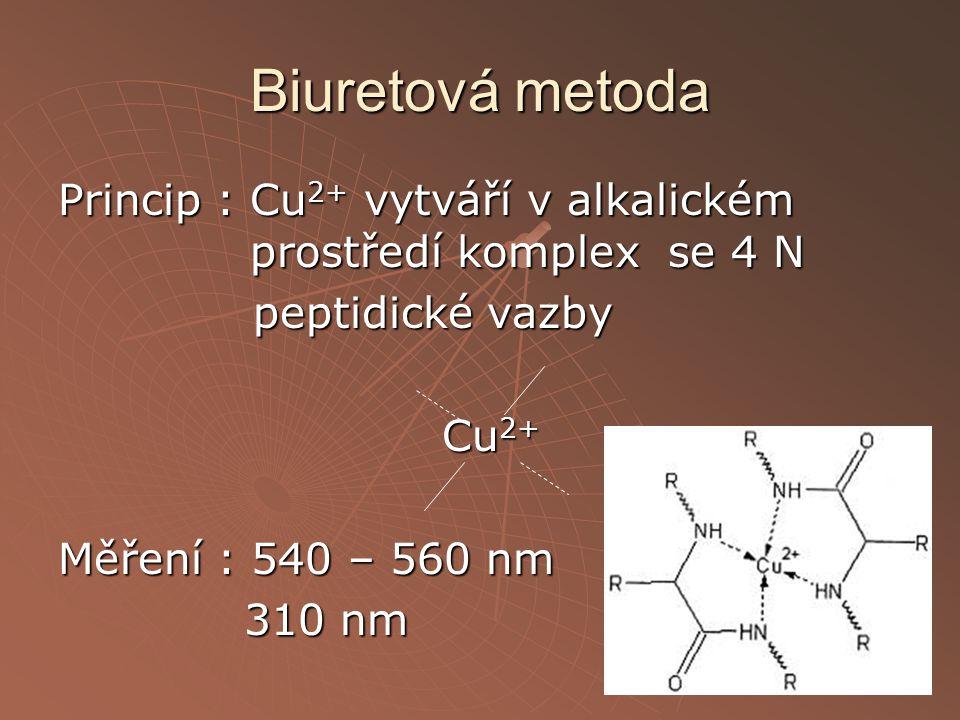 Biuretová metoda Princip : Cu 2+ vytváří v alkalickém prostředí komplex se 4 N peptidické vazby peptidické vazby Cu 2+ Měření : 540 – 560 nm 310 nm 31